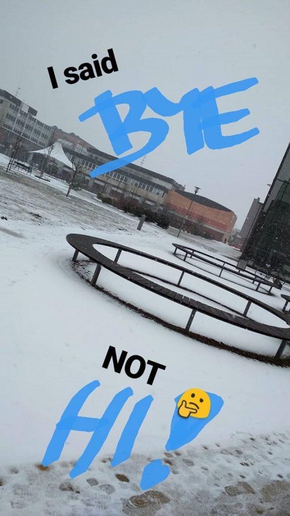 sníh 1
