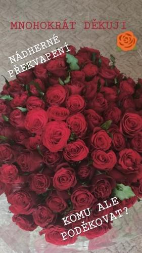 růže kdo to poslal